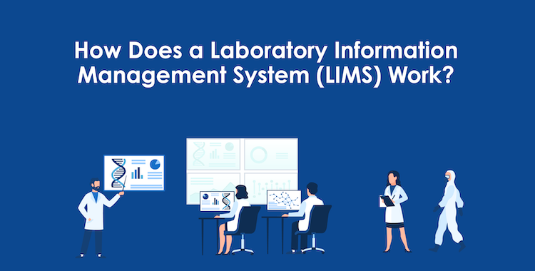 How Does a LIMS Work